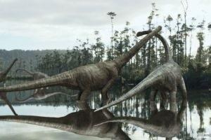 Тарбозавр 3D 12998