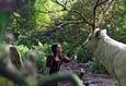 Белоснежка и охотник 3