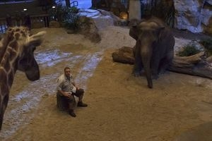 Мой парень из зоопарка 9898