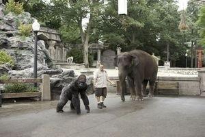 Мой парень из зоопарка 9903