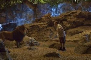 Мой парень из зоопарка 9900