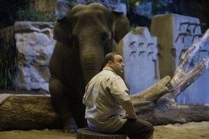 Мой парень из зоопарка 9907