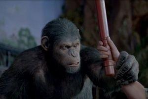 Восстание планеты обезьян 10025