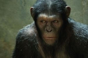 Восстание планеты обезьян 10028