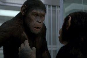 Восстание планеты обезьян 10030
