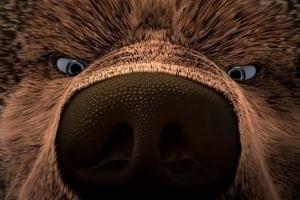 Как приручить медведя 14496