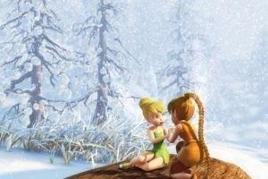 Феи: Тайна зимнего леса 14723