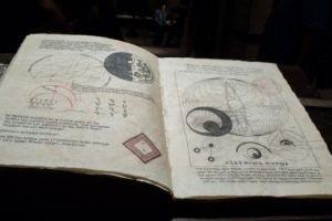 Прекрасные создания 15417