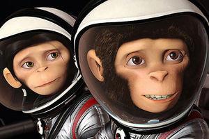 Мартышки в космосе 2577