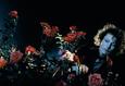 Проект Cinemascope: Король роз 6