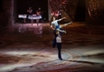 Cirque du Soleil «Crystal» 16