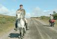 О лошадях и людях 3