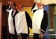 Как пингвины новый год встречали 1