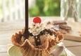 Открытие кафе-мороженого «Baskin Robins» 2