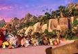 Angry Birds в кино 10
