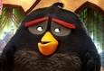 Angry Birds в кино 9