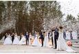Свадебный квест 2