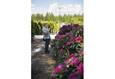 Ландшафтный фестиваль «Садовый переполох» 1