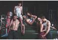 TheatreHD: Мэтью Борн: Кар Мен 5