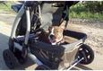 Конкурс «Тайная жизнь ваших домашних животных» 38