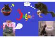 Конкурс «Тайная жизнь ваших домашних животных» 17