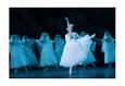 Жизель. Гастроли Санкт-Петербургского академического театра балета имени Леонида Якобсона 1