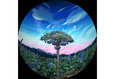 Майя. Наблюдатели Вселенной 2