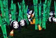 Фестиваль гигантских китайских фонарей 3