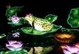 Фестиваль гигантских китайских фонарей 4