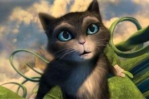Кот в сапогах 10833