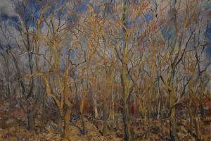 Выставка пейзажей 3902