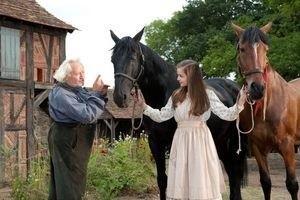 Боевой конь 11917