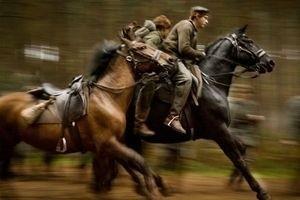 Боевой конь 11918