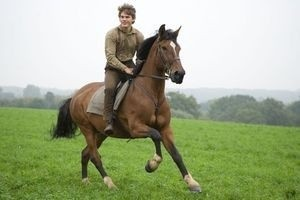Боевой конь 11907
