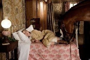 Боевой конь 11901