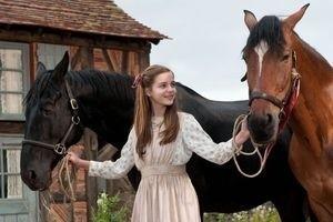 Боевой конь 11913