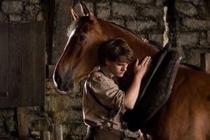 Боевой конь 11904