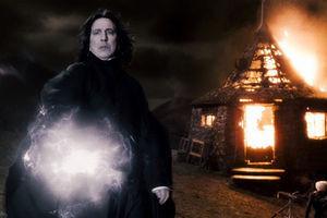 Гарри Поттер и Принц-полукровка 4309