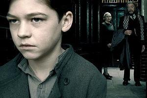 Гарри Поттер и Принц-полукровка 4306