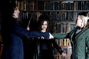 Гарри Поттер и Принц-полукровка 4305