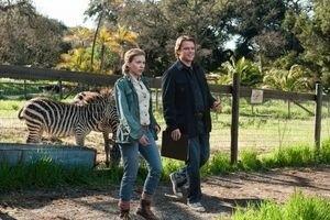 Мы купили зоопарк 12606