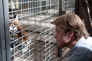Мы купили зоопарк 12604