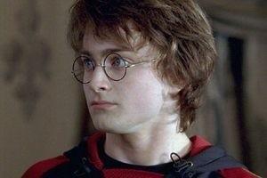 Гарри Поттер и кубок огня 3143