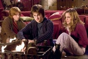 Гарри Поттер и кубок огня 3145