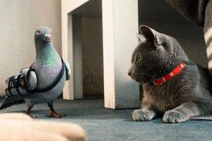 Кошки против собак: Месть Китти Галор 6092