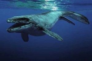 Морские динозавры 3D: Путешествие в доисторический мир 6765