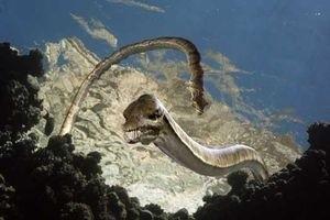Морские динозавры 3D: Путешествие в доисторический мир 6758
