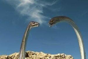 Морские динозавры 3D: Путешествие в доисторический мир 6759