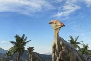Морские динозавры 3D: Путешествие в доисторический мир 6769
