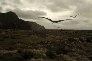 Морские динозавры 3D: Путешествие в доисторический мир 6764